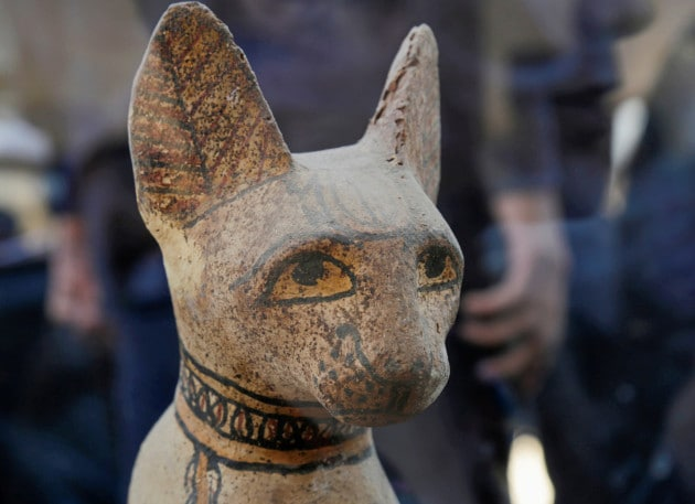 Due mummie di leone scoperte a Saqqara, in Egitto