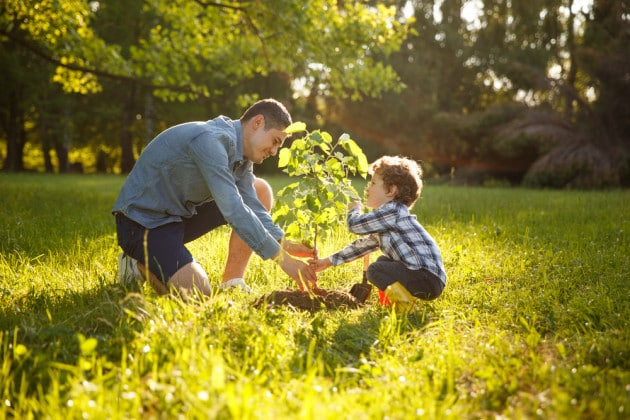 Padre e figlio piantano un albero