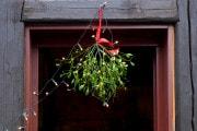 Natale: perché i baci sotto il vischio?