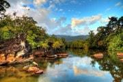 Perché dovremmo tenerci strette le foreste naturali (e il Madagascar sta perdendo le sue)