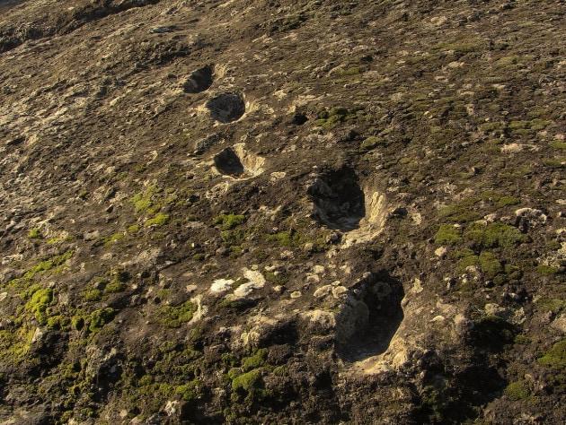 I Neanderthal potrebbero aver scalato un vulcano poco dopo un'eruzione
