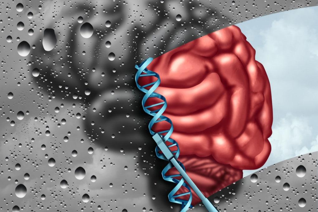 Uno dei più importanti studi su genetica e autismo