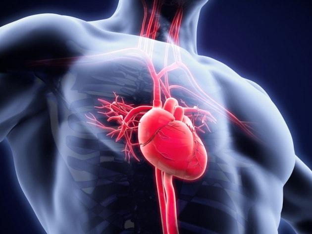 Il primo trapianto di cellule cardiache coltivate in laboratorio
