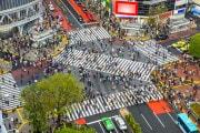 La webcam sull'incrocio più famoso di Tokyo