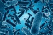 L'AI può indovinare l'età a partire dal microbiota