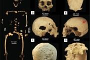 Uno scheletro riscrive la storia delle popolazioni precolombiane?