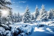 Come sta cambiando la neve