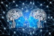 Il primo cervello ibrido e