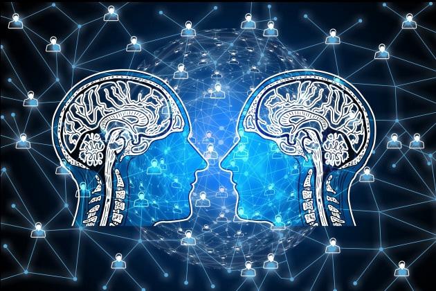 """Il primo cervello ibrido e """"distribuito"""""""