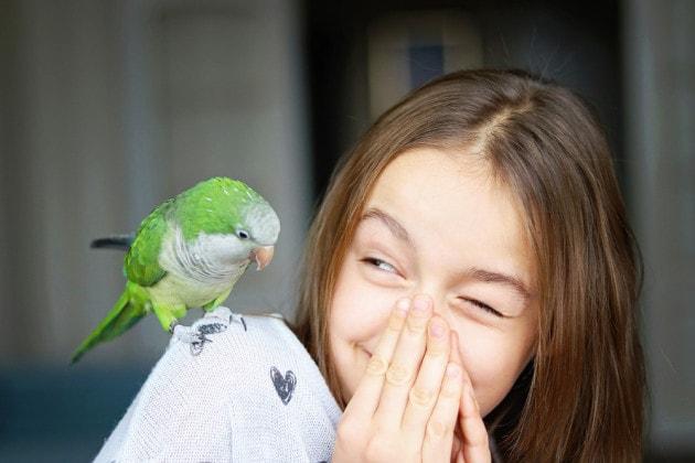 Come fanno i pappagalli a riprodurre la voce umana?