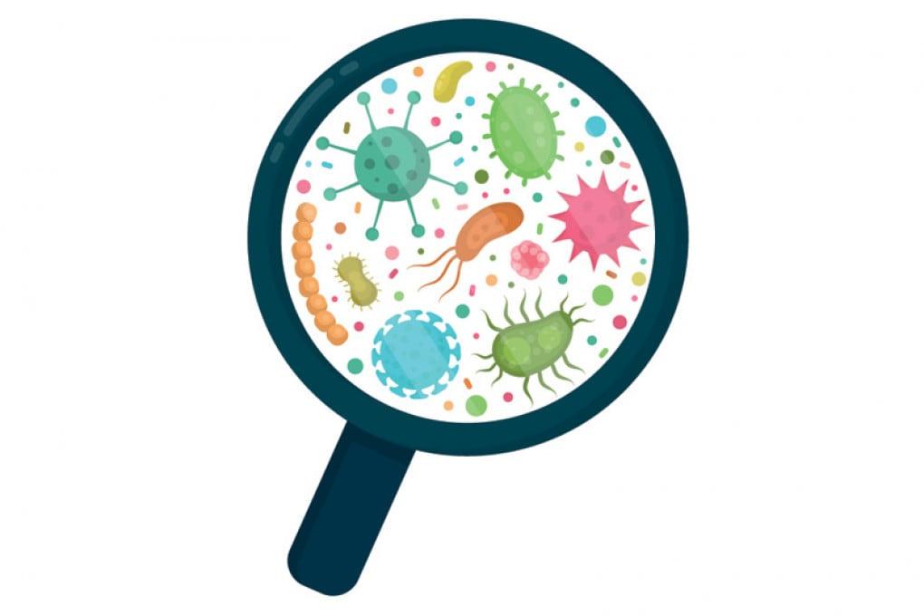 Illustrazione: un'indagine sul numero di batteri stabilmente residenti sul nostro ombelico