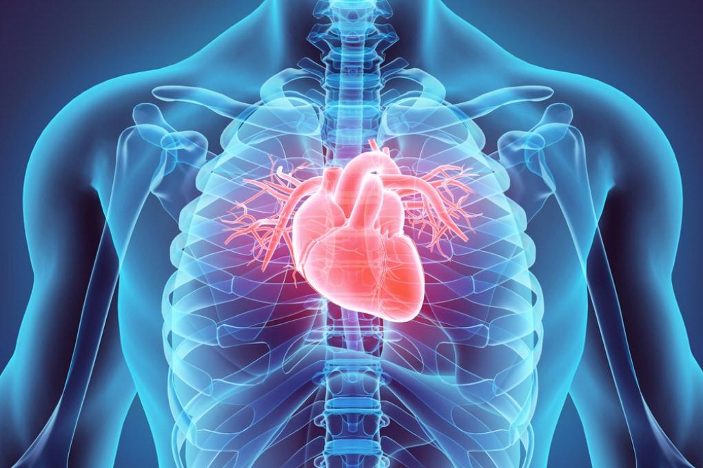 COVID-19: le conseguenze sulla salute del cuore