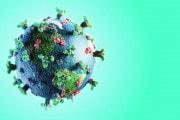La COVID-19 e la conferenza sul clima: la COP26 rimandata al 2021