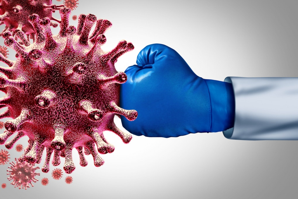 COVID-19 e mucca pazza: epidemie a confronto - Focus.it