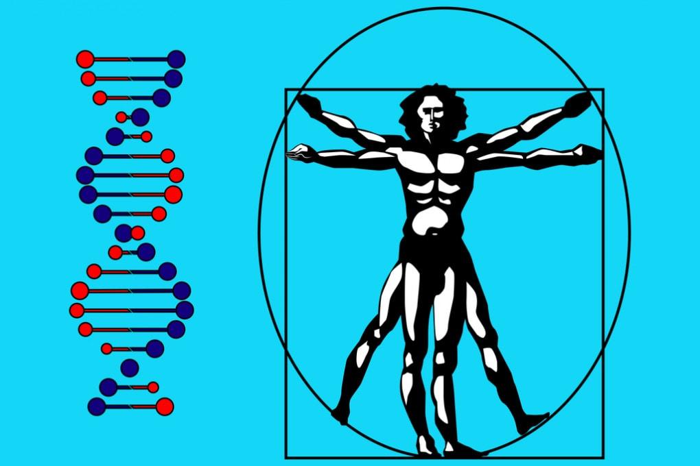 L'Uomo Vitruviano e l'elica del DNA: la biodiversità genetica degli italiani.