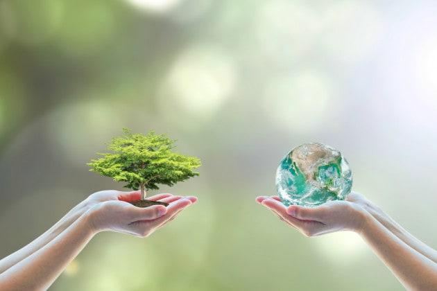 Giornata Mondiale dell'Ambiente 2020: è il momento della natura