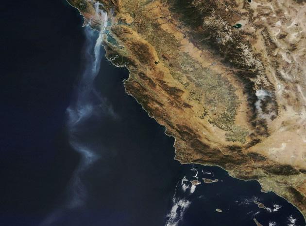Gli oceani si riprendono buona parte del carbonio degli incendi