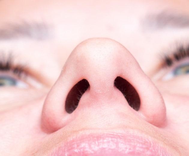 Il naso è la porta di accesso principale per il coronavirus SARS-CoV-2