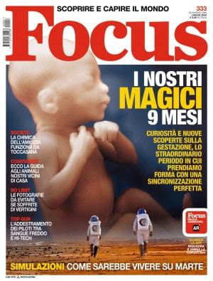 Focus-333