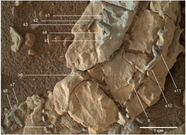 Tracce di vita fossile su Marte?