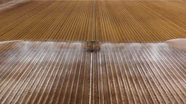 Acqua e agricoltura: verso un'emergenza idrica globale