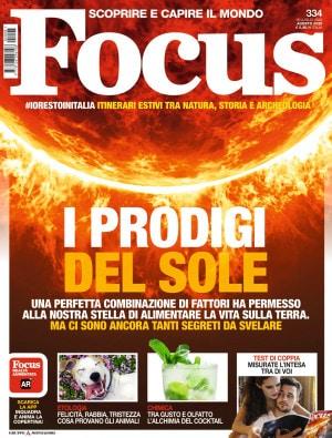 Focus-334