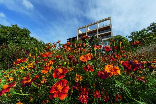L'orto del Bio Hotel Panorama a Malles in Val Venosta.