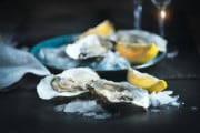 Quanto sono contaminati i frutti di mare?