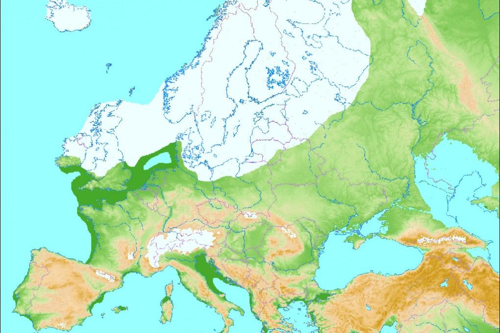 L'Europa verso la fine dell'ultimo periodo glaciale.
