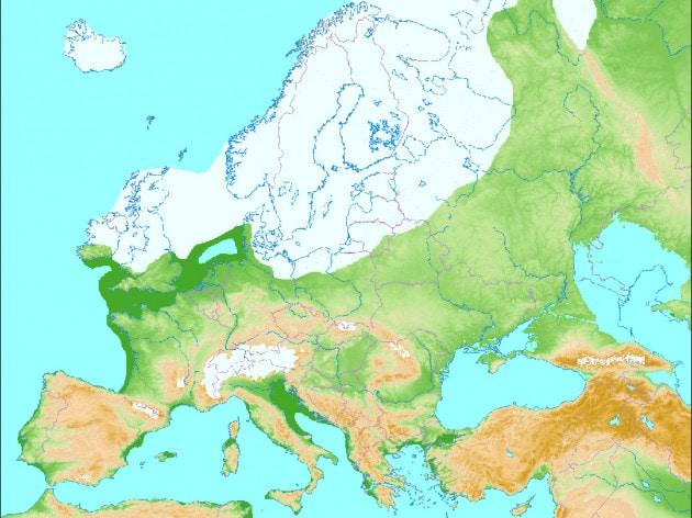 Il freddo globale dell'ultima era glaciale