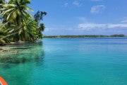 L'atollo che verrà salvato sradicando il 99% delle palme