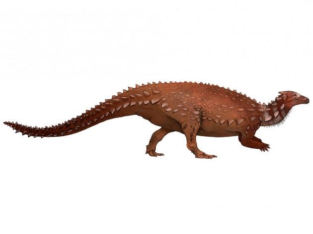 Dinosauri: Scelidosaurus harrisonii (illustrazione).