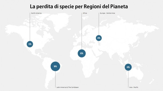 WWF, perdita di biodiversità