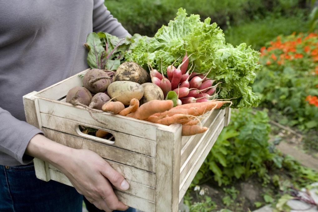 Uno stile di vita sano allunga la vita anche di chi ha già problemi di salute