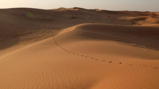 Il deserto del Nefud, in Arabia Saudita.