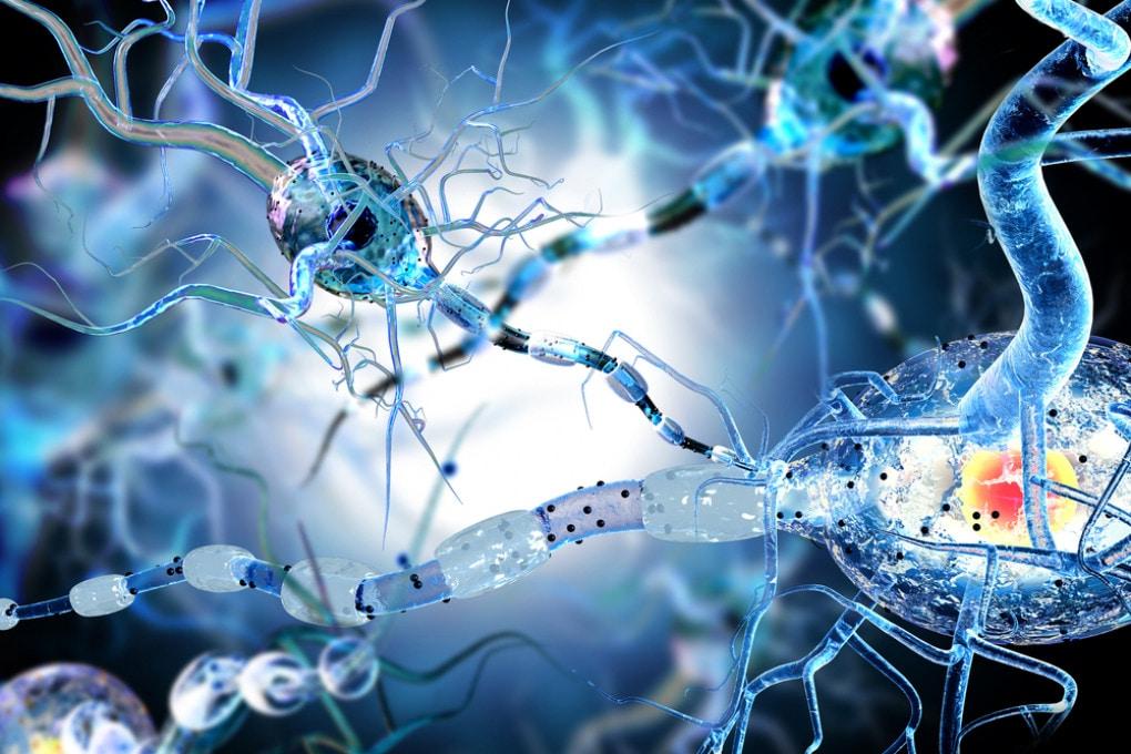 Nanotubi di carbonio per ricucire le lesioni spinali