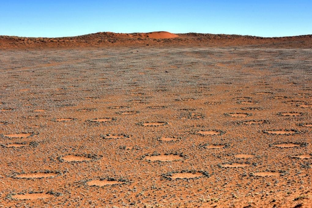 Cerchi delle fate in Namibia
