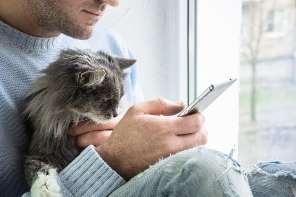 Anche i gatti sanno imitare gli uomini?