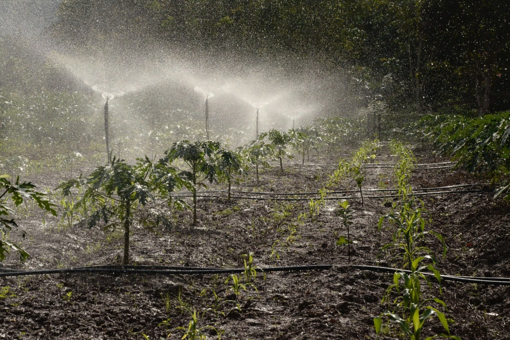agricoltura, irrigazione e fertilizzanti