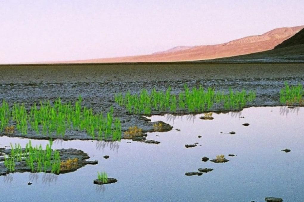 Panorama terrestre dell'Ordoviciano, 460 milioni di anni fa (illustrazione).