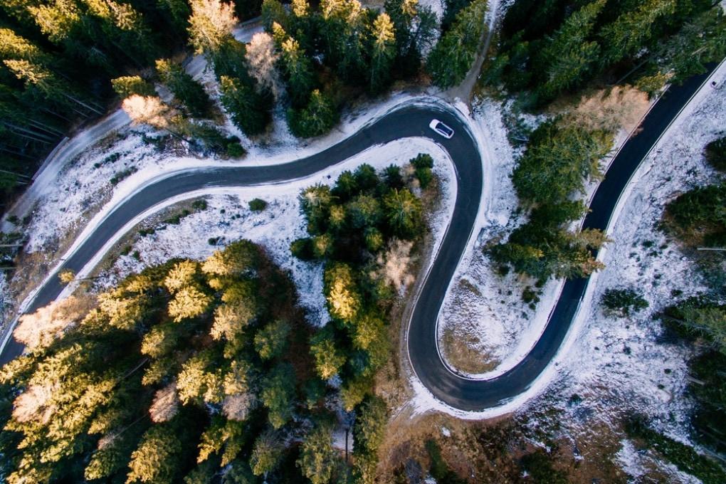 Strada nella foresta