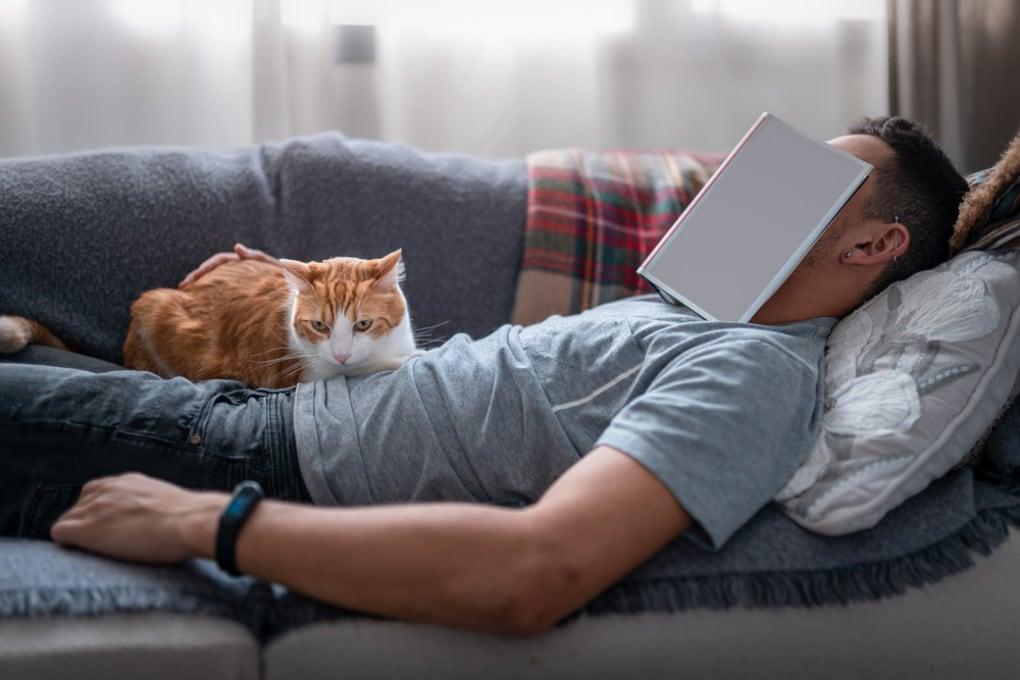 Pisolino pomeridiano sul divano