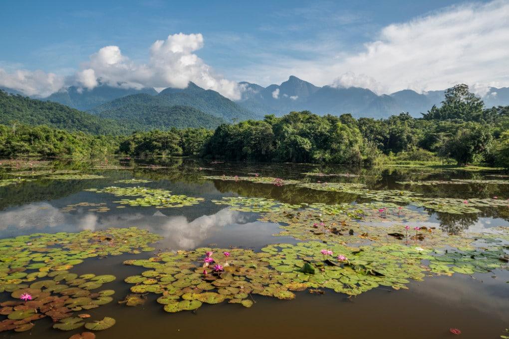Una veduta della foresta atlantica in Brasile.