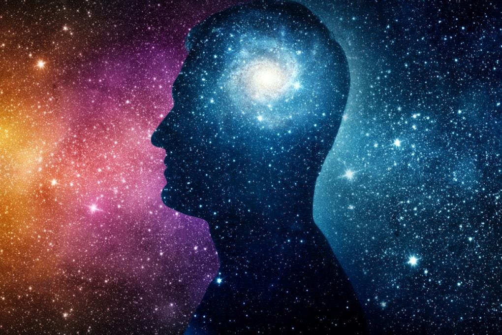 cervello e unverso