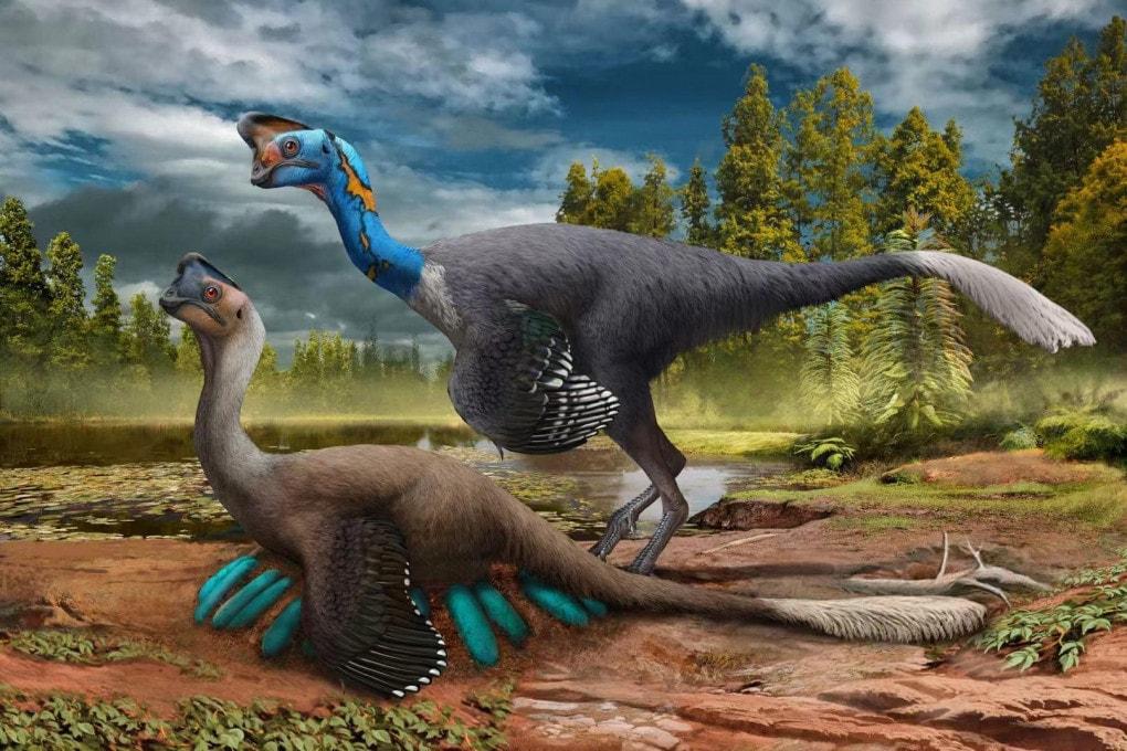 Un Oviraptor cova le sue uova mentre il partner resta di guardia: una ricostruzione scientifica.