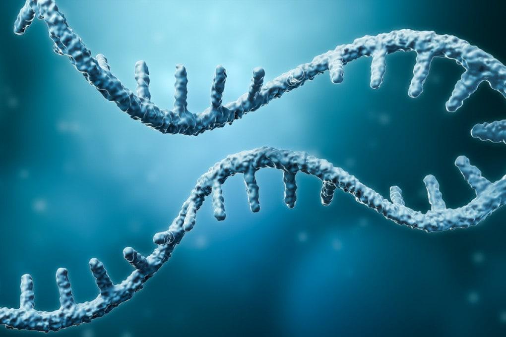 L'mRNA, o RNA messaggero, in un'illustrazione scientifica.