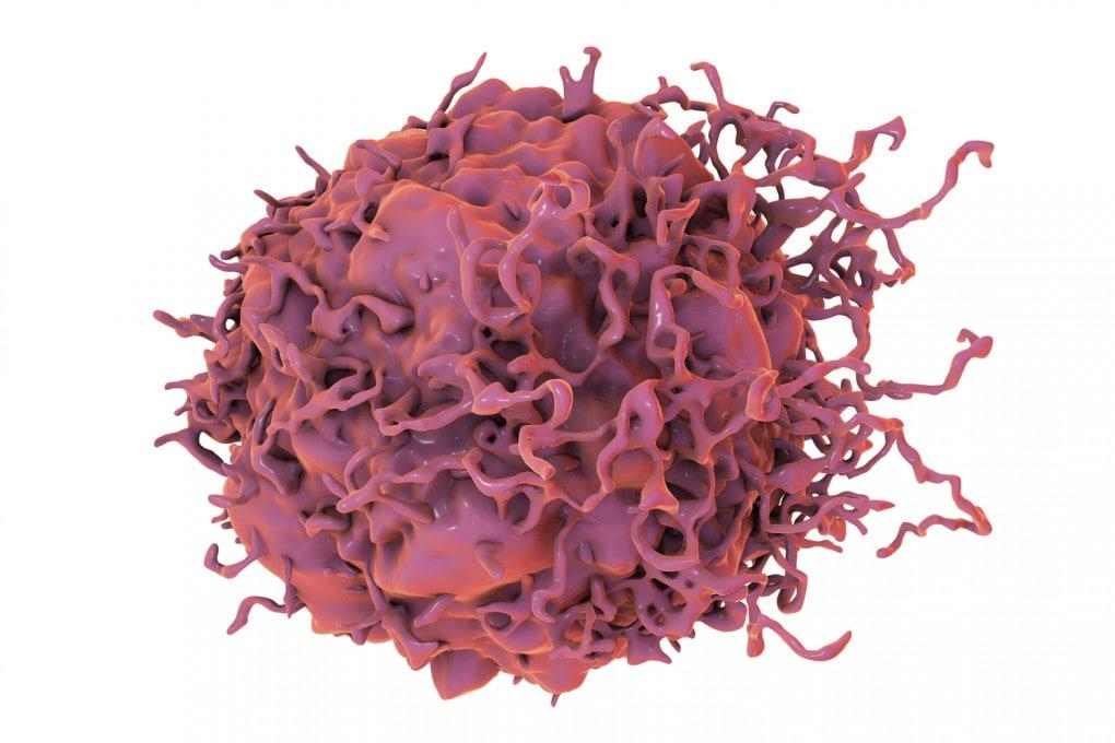 Illustrazione: cellula del tumore del colon