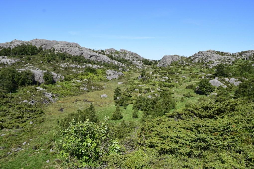 Paesaggio norvegese: uno dei pochi luoghi incontaminati del pianeta.
