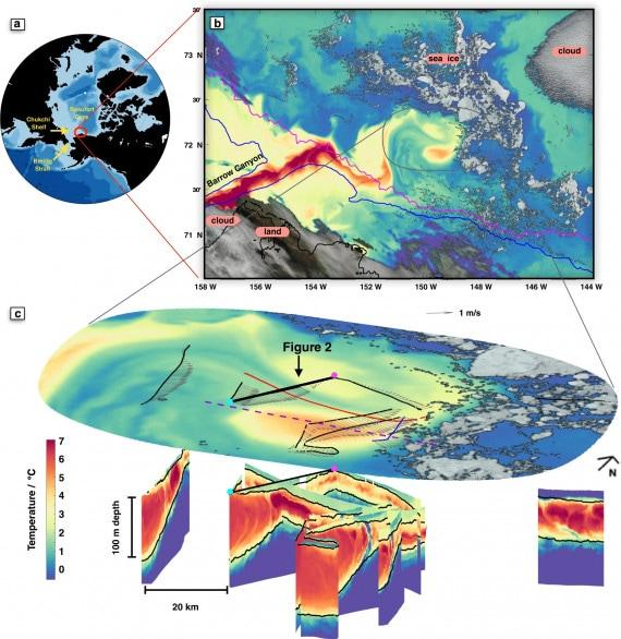 Bombas de calor e submarinos do Ártico: a origem dos bolsões de água quente sob o gelo e seu papel no derretimento do gelo.