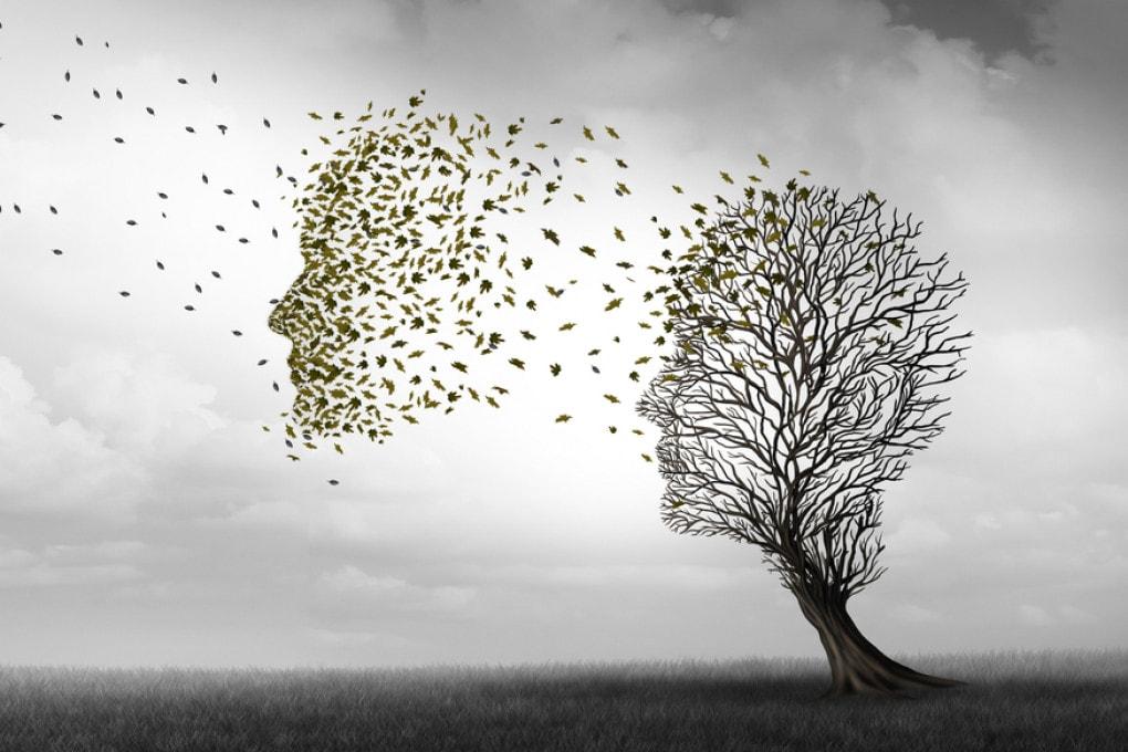 Una nuova ipotesi nella complessa e irrisolta rete di ricerche sulla malattia di Alzheimer.